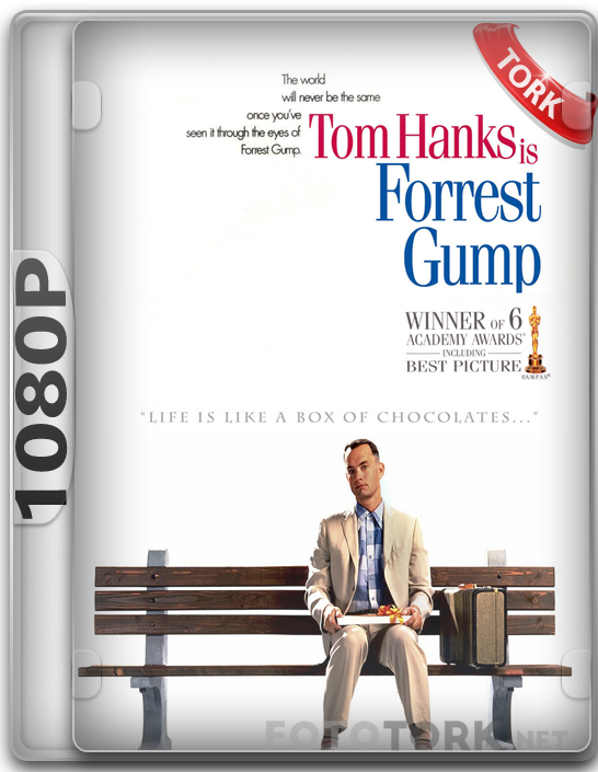 forrest gump in erikson psychological development 1) erikson – industry vs inferiority in the movie forrest gump, there is a scene in which the main character's son reads aloud from a chi.