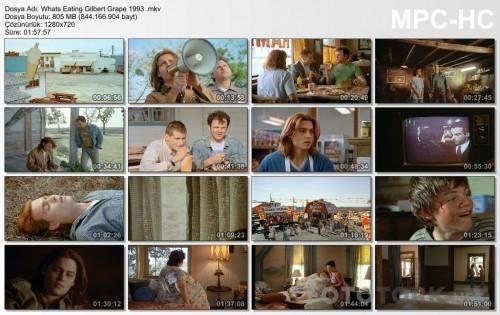 Whats-Eating-Gilbert-Grape-1993-.mkv_thumbs.jpg