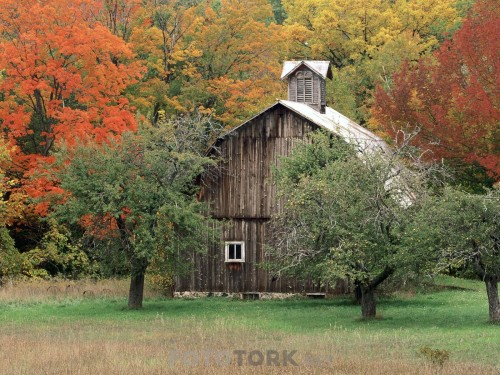 Rustic-Barn-Leelanau-County-Michigan.jpg