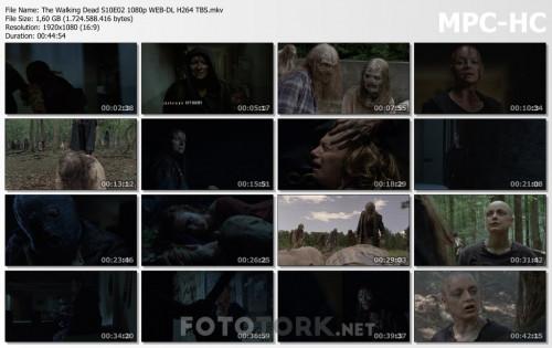 The-Walking-Dead-S10E02-1080p-WEB-DL-H264-TBS.mkv_thumbs.jpg
