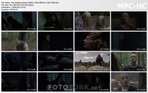 The-Walking-Dead-S10E02-720p-WEB-DL-H264-TBS.mkv_thumbs.jpg