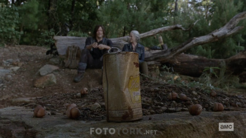 The-Walking-Dead-S10E06-1080p-WEB-DL-H264-XLF.mkv_snapshot_13.02.782.jpg