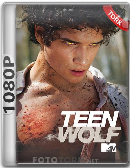 teen-wolf-kapak.jpg