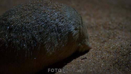 Night-On-Earth---Dunya-da-Gece-S01E02-Mehtapli-Duzlukler.mkv_snapshot_41.36.835.jpg