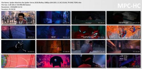 Spider-ManInto.the.Spider-Verse.2018.BluRay.1080p.x264.DD5.1.E.AC3.DUAL.TR-ENG.TORK.mkv_thumbs.jpg