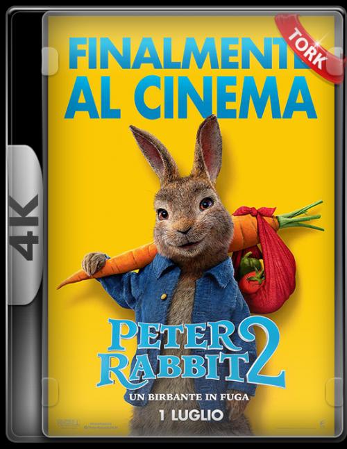 Peter-4k.png